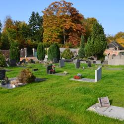 Allerheiligen: gratis busvervoer naar het kerkhof